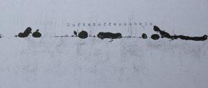 Duftstoffvokabeln Monotypie, Schreibmaschine, 2018